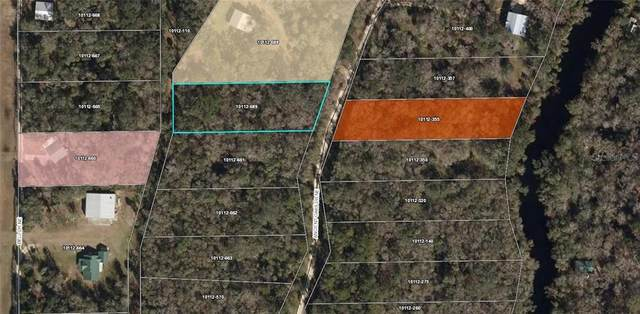 2243 Ancient Oaks Drive NE, Perry, FL 32348 (MLS #T3276450) :: Griffin Group