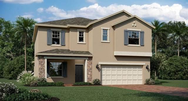 2279 Mountain Pine Street, Ocoee, FL 34761 (MLS #T3276472) :: Griffin Group