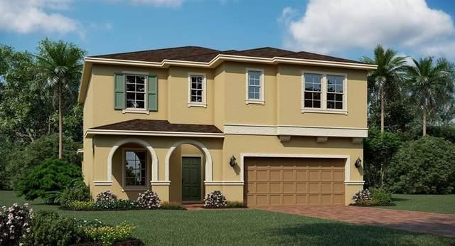 2297 Mountain Pine Street, Ocoee, FL 34761 (MLS #T3276479) :: Griffin Group