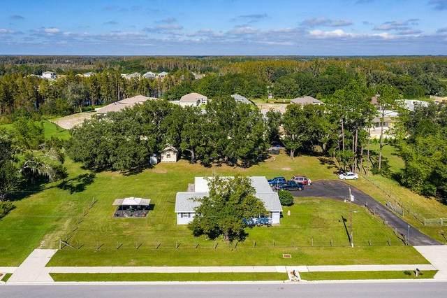 19851 Leonard Road, Lutz, FL 33558 (MLS #T3276563) :: Griffin Group