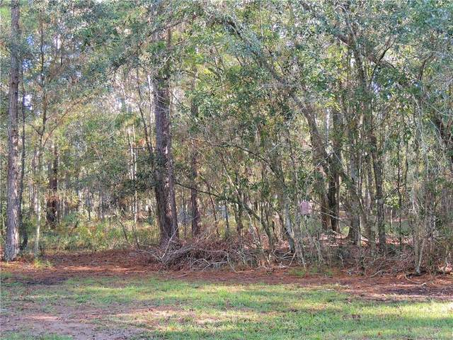 Lutz Lake Fern Road, Lutz, FL 33558 (MLS #T3276609) :: Key Classic Realty