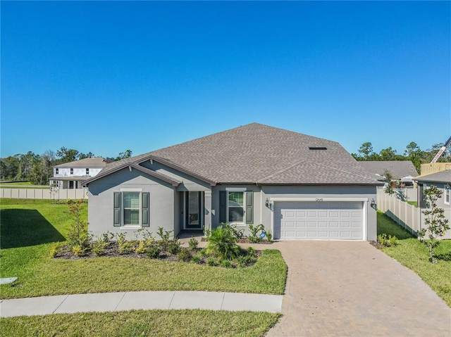 12641 Palapa Loop, Spring Hill, FL 34610 (MLS #T3276624) :: Griffin Group