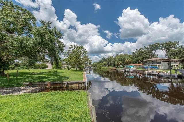 9924 Peninsular Drive, Gibsonton, FL 33534 (MLS #T3276655) :: Keller Williams Realty Peace River Partners