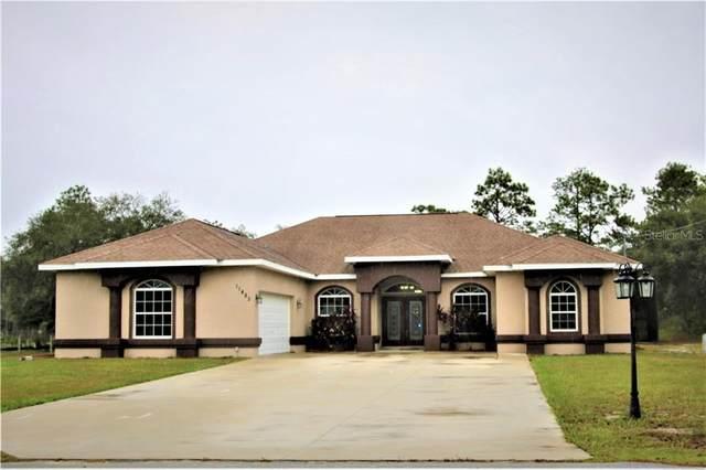 11482 Mandlin Road, Weeki Wachee, FL 34614 (MLS #T3276750) :: Carmena and Associates Realty Group