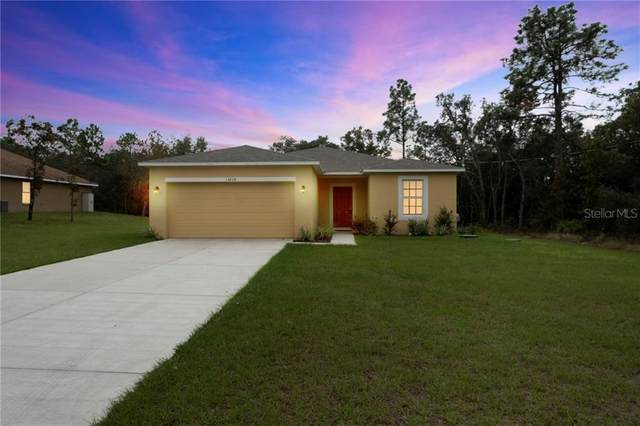 13258 Quigley Avenue, Weeki Wachee, FL 34614 (MLS #T3276762) :: Bridge Realty Group