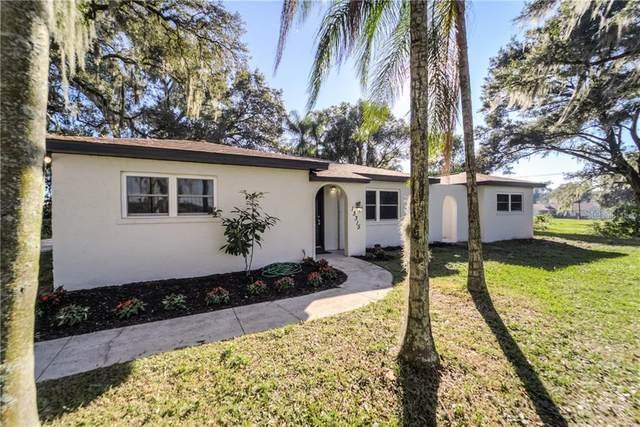 13315 Glen Harwell Road, Dover, FL 33527 (MLS #T3276787) :: Griffin Group