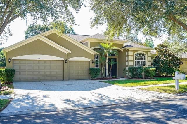 2313 Briana Drive, Brandon, FL 33511 (MLS #T3276841) :: The Brenda Wade Team