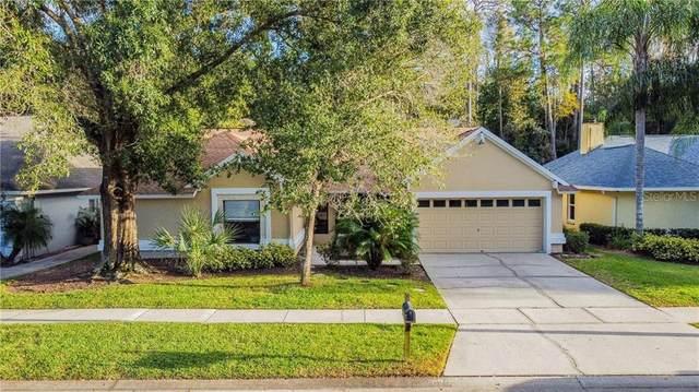 9741 Fox Chapel Road, Tampa, FL 33647 (MLS #T3276852) :: Team Bohannon Keller Williams, Tampa Properties