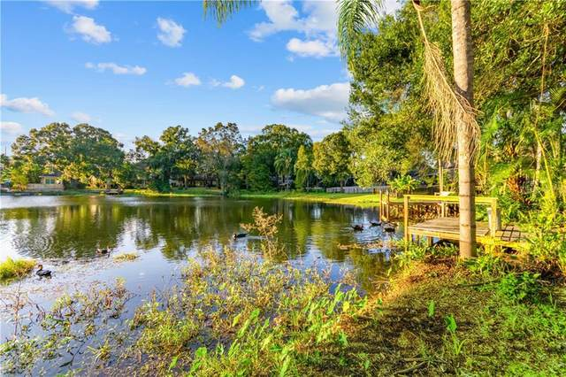 12112 Midlake Drive, Tampa, FL 33612 (MLS #T3276872) :: Carmena and Associates Realty Group