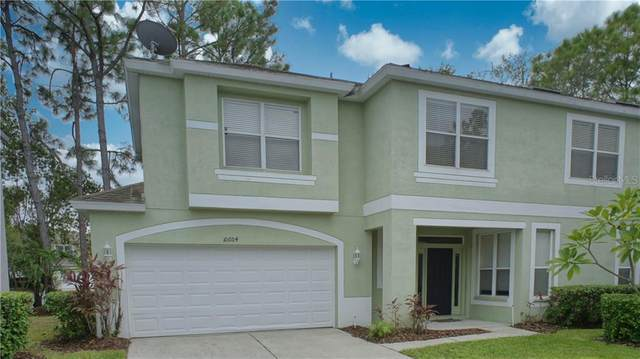 10604 Ashtead Wood Court, Tampa, FL 33626 (MLS #T3276875) :: Griffin Group