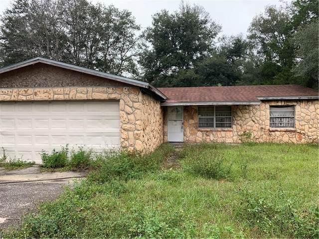27173 Simona Avenue, Brooksville, FL 34602 (MLS #T3276950) :: Cartwright Realty