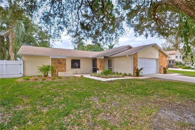 15807 Ironware Place, Tampa, FL 33624 (MLS #T3276970) :: Griffin Group