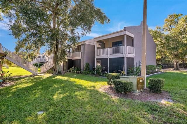 4032 Cortez Drive B, Tampa, FL 33614 (MLS #T3277008) :: SMART Luxury Group