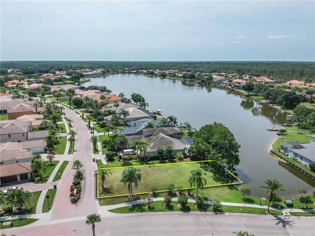 10501 Bermuda Isle Drive, Tampa, FL 33647 (MLS #T3277035) :: Team Bohannon Keller Williams, Tampa Properties