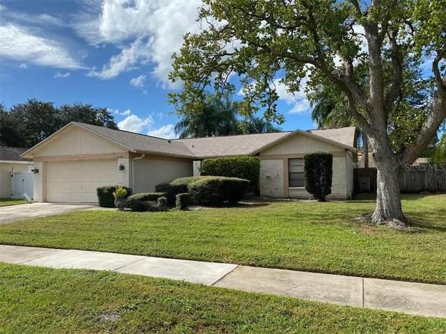 15708 Pony Pl, Tampa, FL 33624 (MLS #T3277110) :: Burwell Real Estate