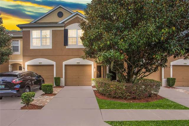 8480 Sandy Beach Street, Tampa, FL 33634 (MLS #T3277143) :: Florida Real Estate Sellers at Keller Williams Realty