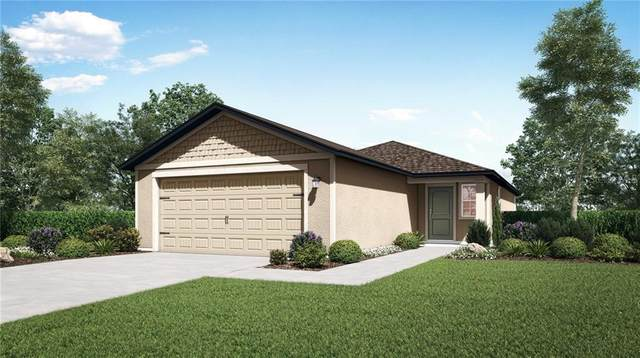 30126 Fedora Circle, Brooksville, FL 34602 (MLS #T3277252) :: Bustamante Real Estate