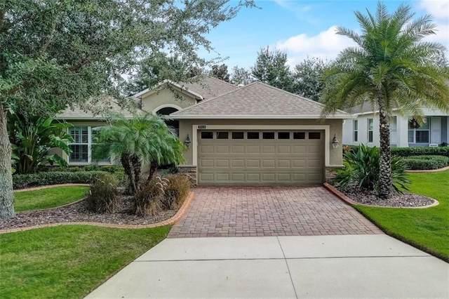 3313 Saloman Lane, Clermont, FL 34711 (MLS #T3277282) :: Century 21 Professional Group