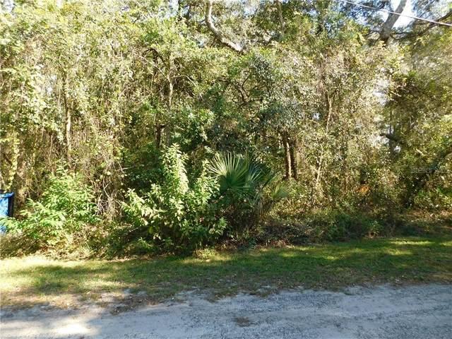 0 Texel Avenue, New Port Richey, FL 34654 (MLS #T3277298) :: Delgado Home Team at Keller Williams