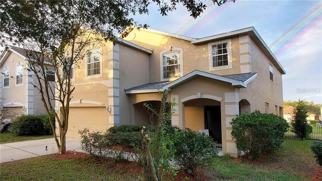 11209 Creek Haven Drive, Riverview, FL 33569 (MLS #T3277338) :: Baird Realty Group
