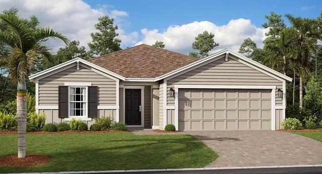 4463 Bluff Oak Loop, Kissimmee, FL 34746 (MLS #T3277357) :: The Price Group