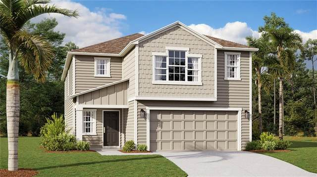 4398 Sunny Creek Place, Kissimmee, FL 34746 (MLS #T3277370) :: Burwell Real Estate