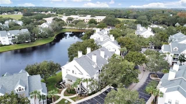 3304 Haviland Court #101, Palm Harbor, FL 34684 (MLS #T3277433) :: Frankenstein Home Team