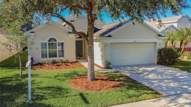 9821 Jasmine Brook Circle, Land O Lakes, FL 34638 (MLS #T3277437) :: Godwin Realty Group