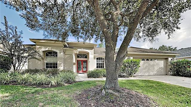 18123 Heron Walk Drive, Tampa, FL 33647 (MLS #T3277472) :: The Price Group