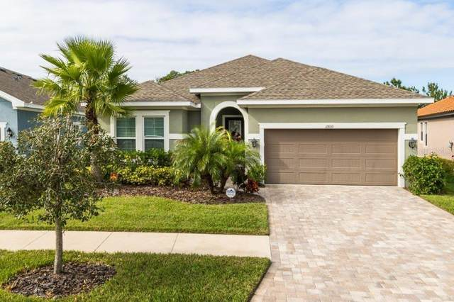 11810 Frost Aster Drive, Riverview, FL 33579 (MLS #T3277479) :: The Price Group