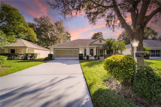 1434 Bluewater Drive, Sun City Center, FL 33573 (MLS #T3277482) :: The Duncan Duo Team