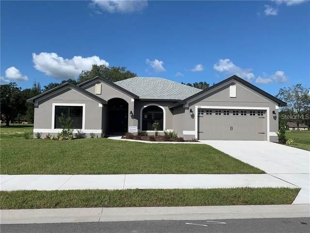 11724 Sunder Berry Street, Hudson, FL 34667 (MLS #T3277545) :: Griffin Group