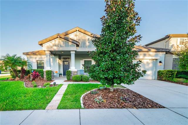 8256 Sequester Loop, Land O Lakes, FL 34637 (MLS #T3277577) :: Godwin Realty Group