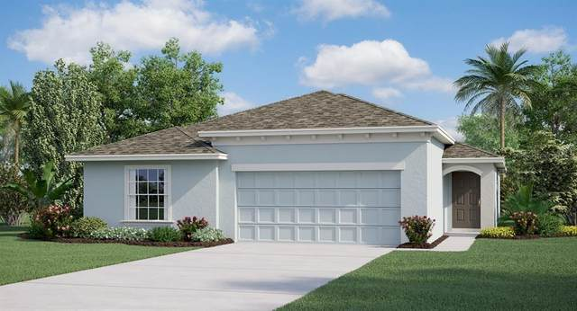 522 Patton Loop, Bartow, FL 33830 (MLS #T3277596) :: Alpha Equity Team
