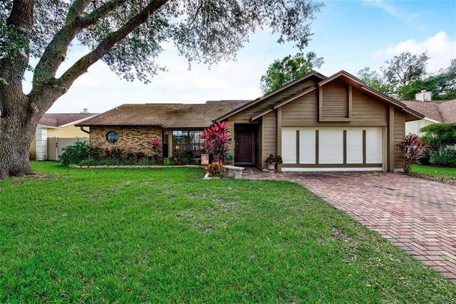 6314 Turtle Creek Boulevard, Tampa, FL 33625 (MLS #T3277602) :: Griffin Group