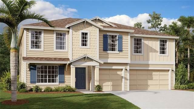 5728 Alenlon Way, Mount Dora, FL 32757 (MLS #T3277606) :: GO Realty