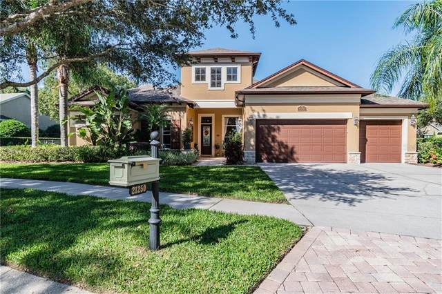 21250 Sky Vista Drive, Land O Lakes, FL 34637 (MLS #T3277643) :: Griffin Group