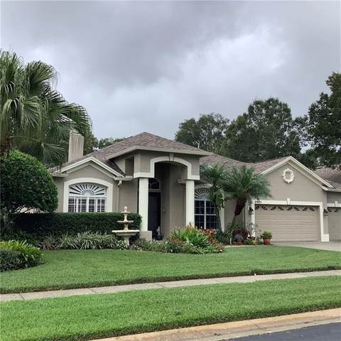 21601 Trumpeter Drive, Land O Lakes, FL 34639 (MLS #T3277663) :: Godwin Realty Group