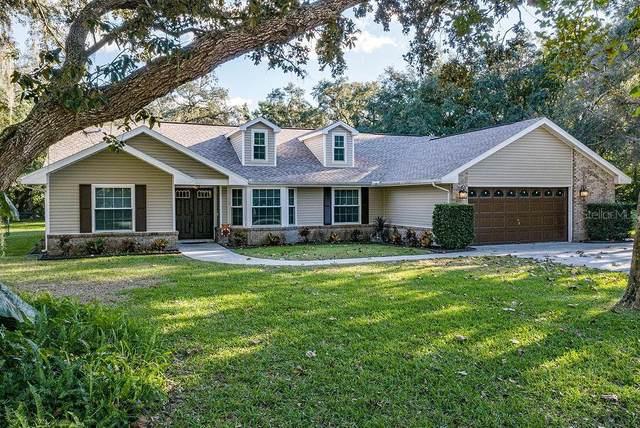 13754 Powder Keg Court, Hudson, FL 34667 (MLS #T3277678) :: Rabell Realty Group