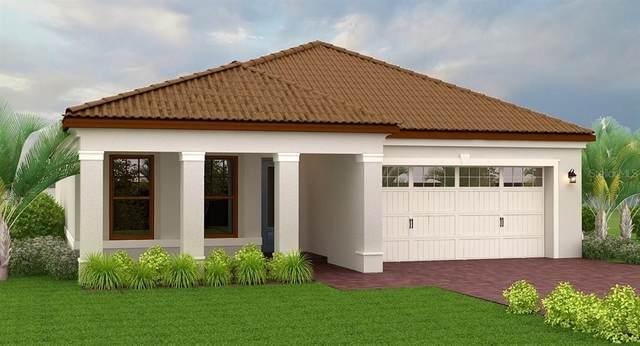 2117 Olano Street, Palmetto, FL 34221 (MLS #T3277740) :: Tuscawilla Realty, Inc