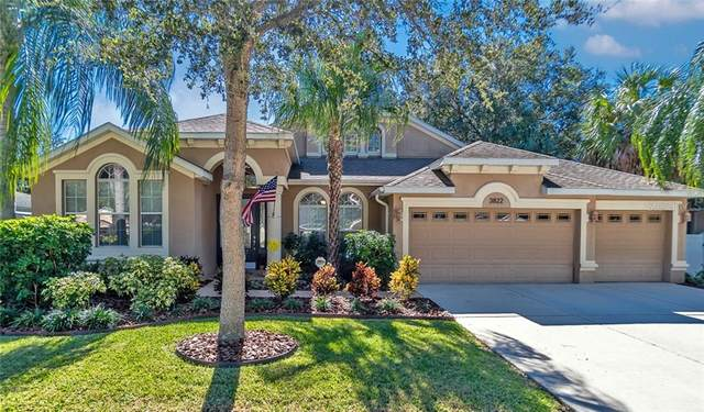 3822 W Sevilla Street, Tampa, FL 33629 (MLS #T3277764) :: Griffin Group