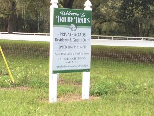 Trilby Trail, Dade City, FL 33523 (MLS #T3277767) :: Carmena and Associates Realty Group