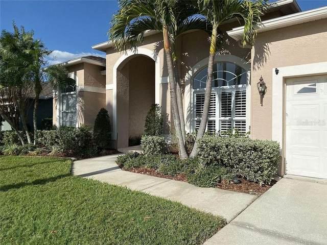 12020 Wandsworth Drive, Tampa, FL 33626 (MLS #T3277772) :: Keller Williams Realty Peace River Partners