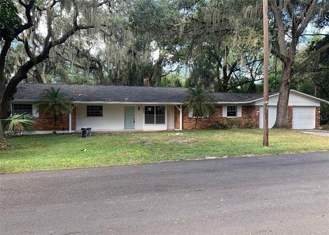 8821 Van Fleet Road, Riverview, FL 33578 (MLS #T3277784) :: The Figueroa Team