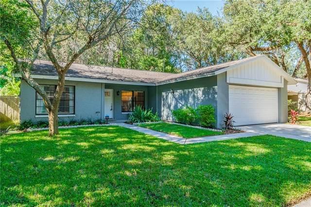 14728 Oak Vine Drive, Lutz, FL 33559 (MLS #T3277789) :: Keller Williams Realty Peace River Partners