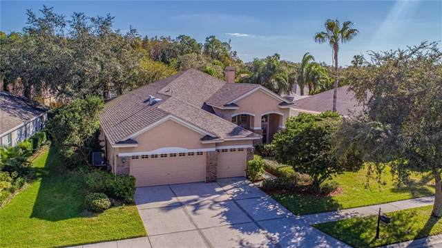 10237 Millport Drive, Tampa, FL 33626 (MLS #T3277813) :: Bustamante Real Estate