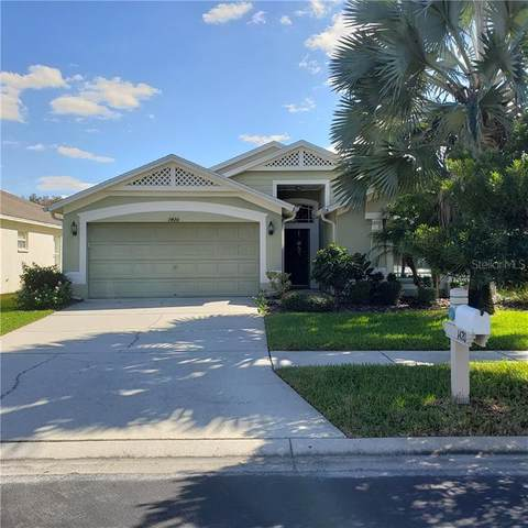 1420 Greely Court, Wesley Chapel, FL 33543 (MLS #T3277820) :: Premier Home Experts