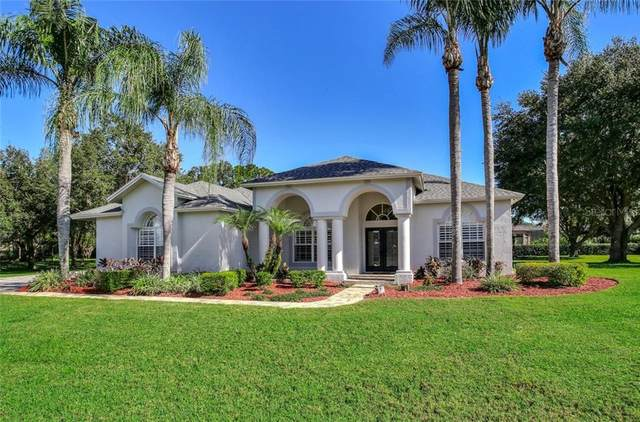 17909 Simms Road, Odessa, FL 33556 (MLS #T3277831) :: Premier Home Experts