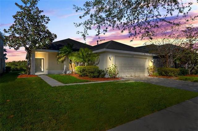 20064 Nob Oak Avenue, Tampa, FL 33647 (MLS #T3277857) :: Premier Home Experts
