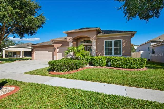 3542 Fortingale Drive, Wesley Chapel, FL 33543 (MLS #T3277877) :: Griffin Group